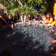Third Graders enjoy field trip to Heathcote Botanical Gardens