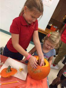 Using pumpkin seeds develop number sense skills.